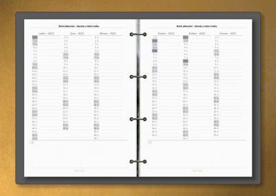 Roční plánování
