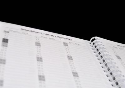 myonlymy - vnitřek - roční plánování